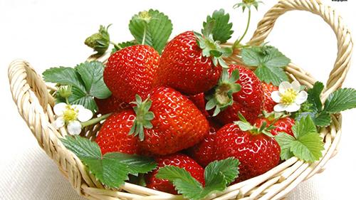 Thành phần của dâu tây chứa nhiều chất chống oxy hóa, chất xơ và vitamin C