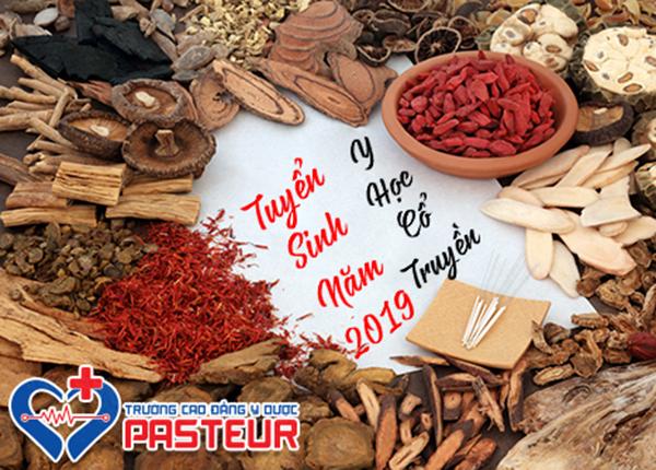 Trường Cao đẳng Y Dược Pasteur tuyển sinh Y học cổ truyền năm 2019