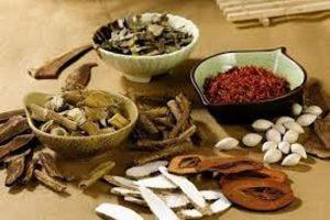 Bài thuốc trị thận âm hư trong Y học cổ truyền