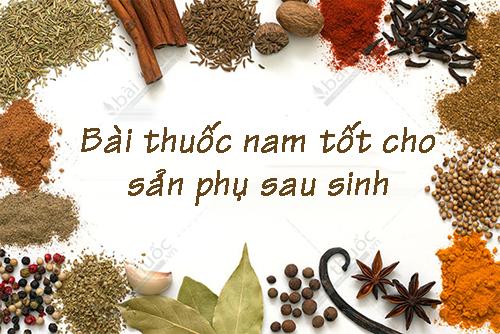 bai-thuoc-nam-tot-cho-san-phu-sau-sinh