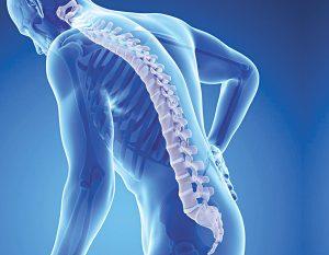 Góc nhìn của Y học hiện đại về bệnh loãng xương