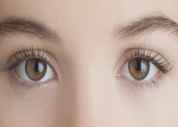 Lá và quả dâu tằm vừa giúp bạn ngủ ngon vừa giúp bạn sáng mắt