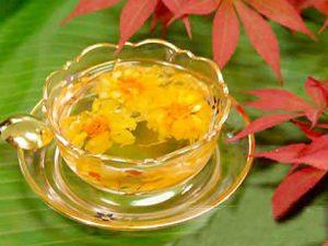 Một số bài thuốc hay từ cây hoa cúc vàng