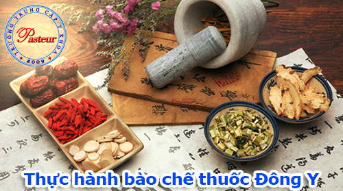 thuc-hanh-bao-che-thuoc-dong-y-pasteur